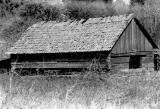 Johnny Crabtree's log cabin near Scio, Oregon, 1951