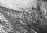 Petroglyphs at Cascadia Springs State Park in Linn County, Oregon, 1954