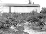 Upper Brice Creek Covered Bridge over Brice Creek in Lane County, 1957