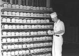 Rack of freshly-made bread at Franz Bakery, Portland, Oregon, 1950