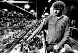 Food processing at the Brooks, Oregon, plant of the Stayton Canning Company, 1981