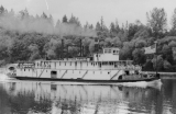 "Sternwheeler ""Claire"" on Willamette River near Wilsonville, Oregon"