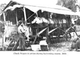 Chuck wagon service during harvest in the Salem, Oregon area, 1910